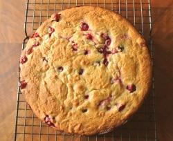 whole-wheat-honey-cranberry-cake